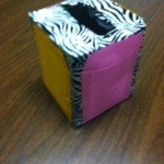 DIY Tissue Box Sort!