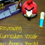 Reviewing Curriculum Vocab w/ Angry Birds!