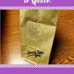 Mystery Bags in Speech: A DIY Idea To Work On A Variety Speech Goals